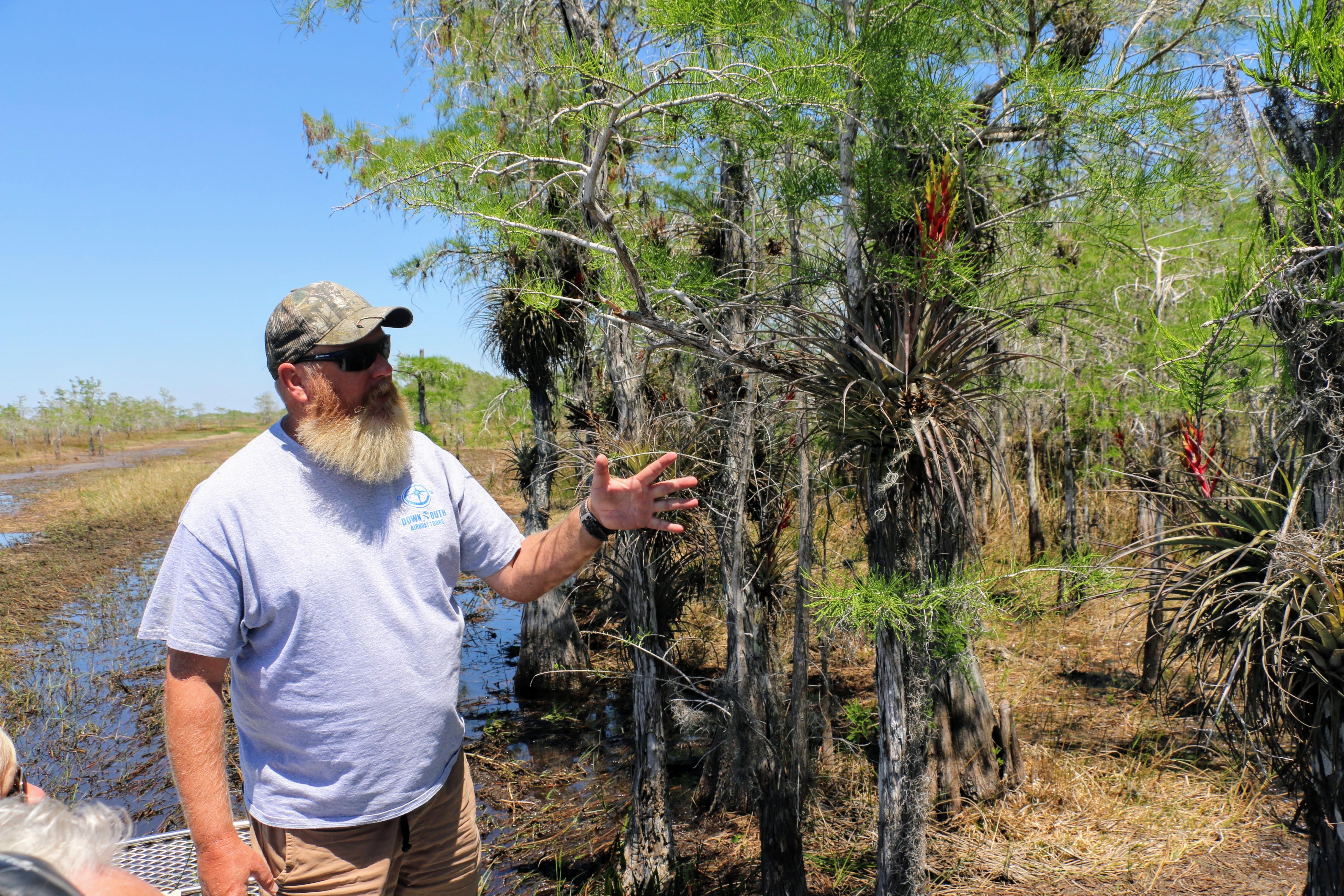 Everglades met gids