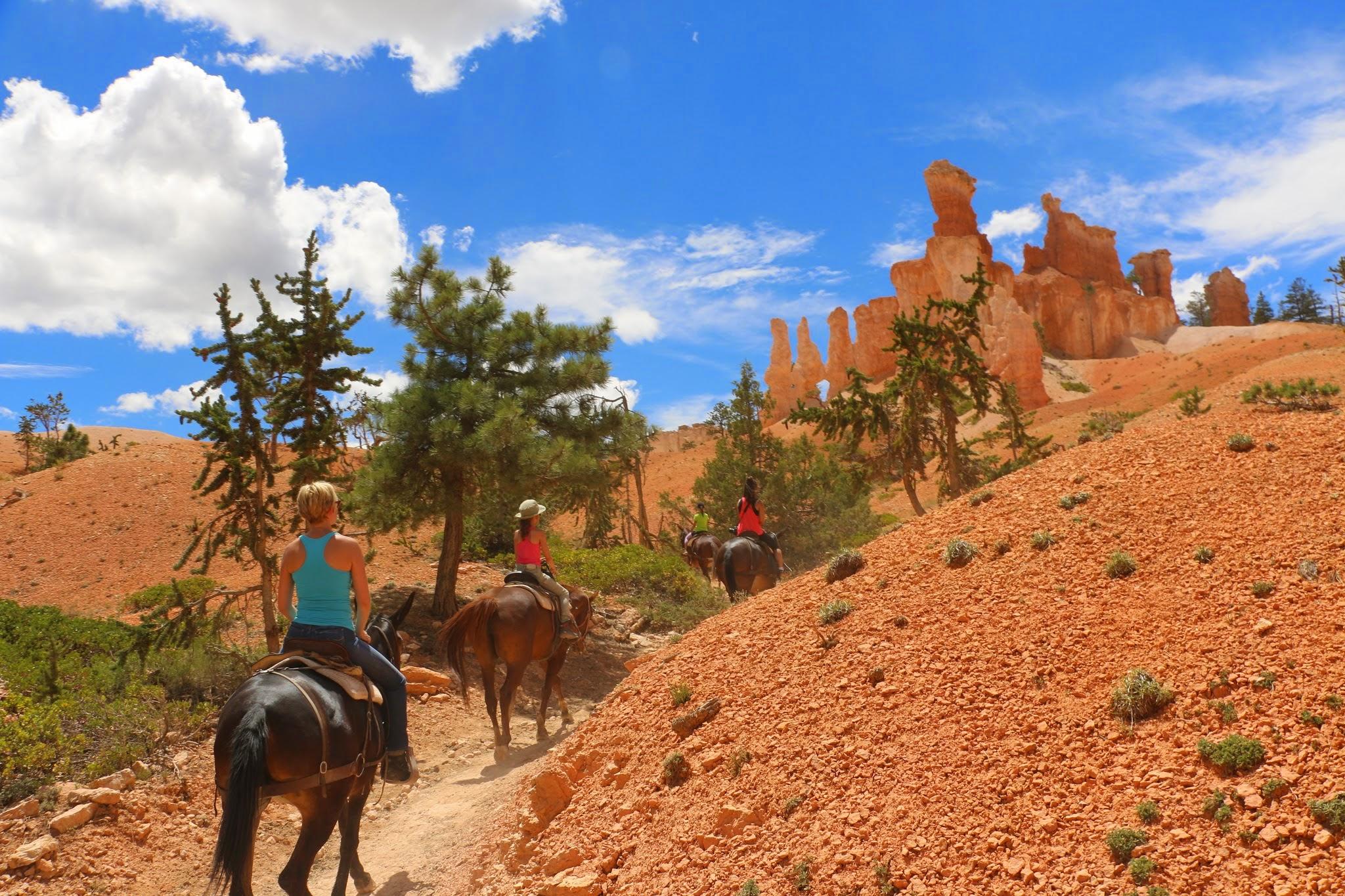Met paard door Bryce Canyon rijden