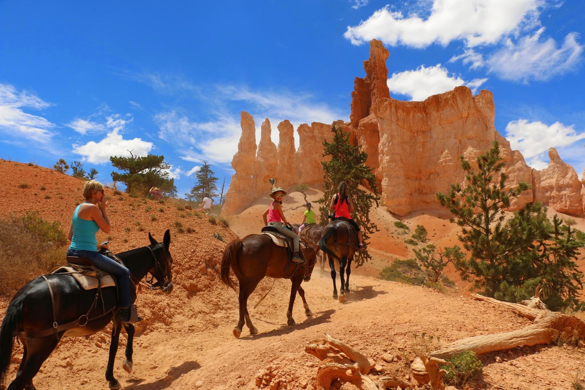 Paardrijden in Utah