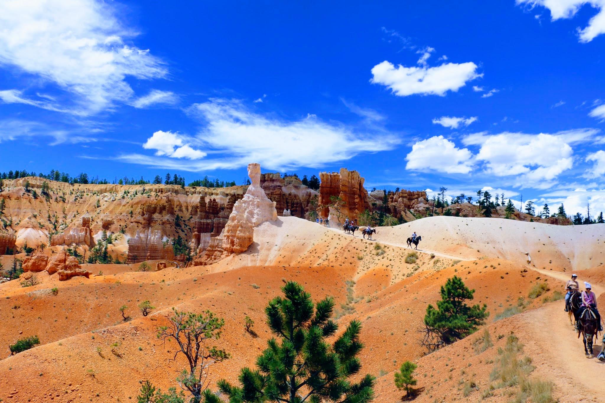 Utah Canyon paardrijden