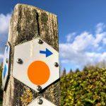 Een blogwandeling in Mettekoven