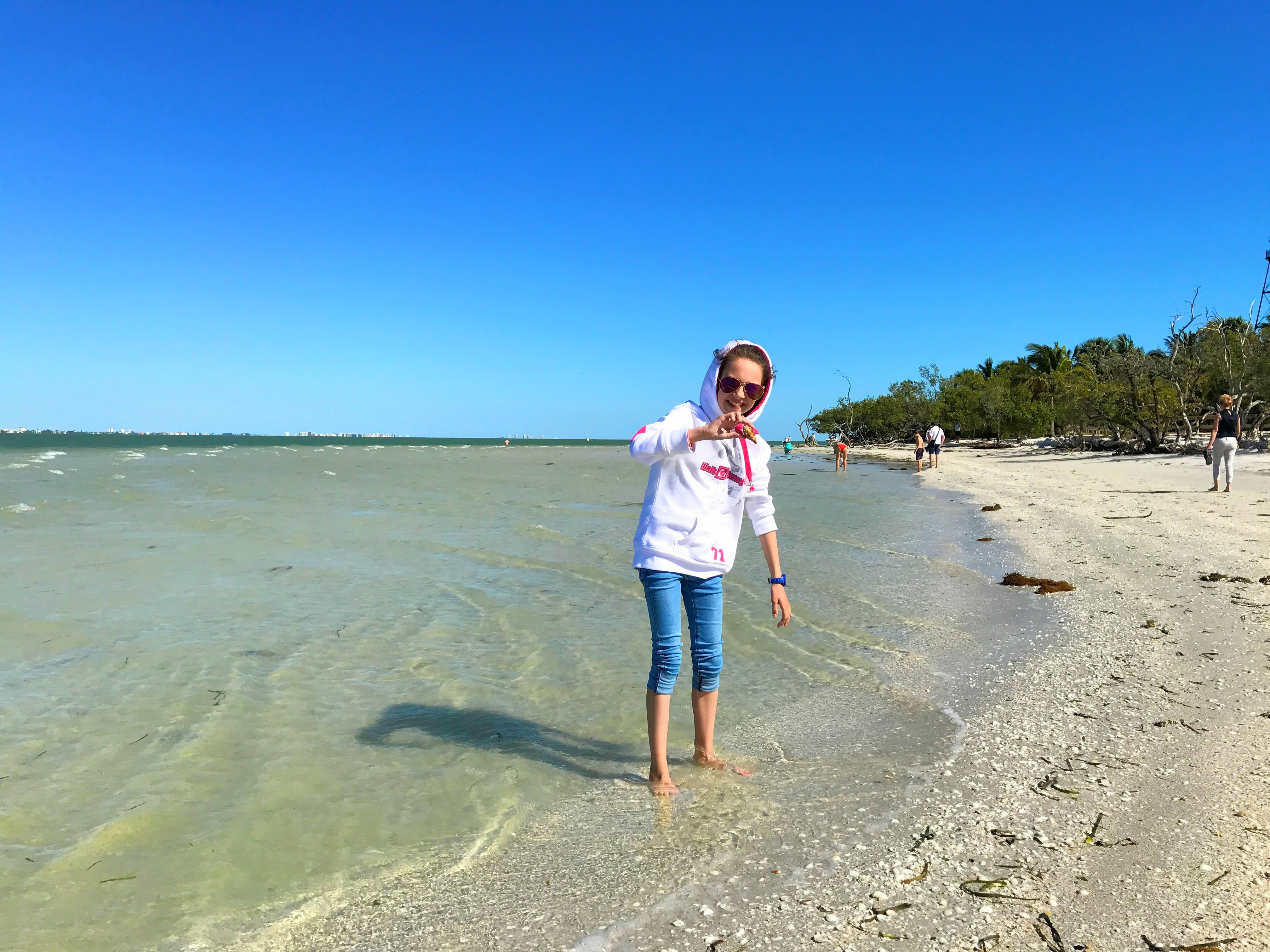Schelpen eiland Sanibel Florida
