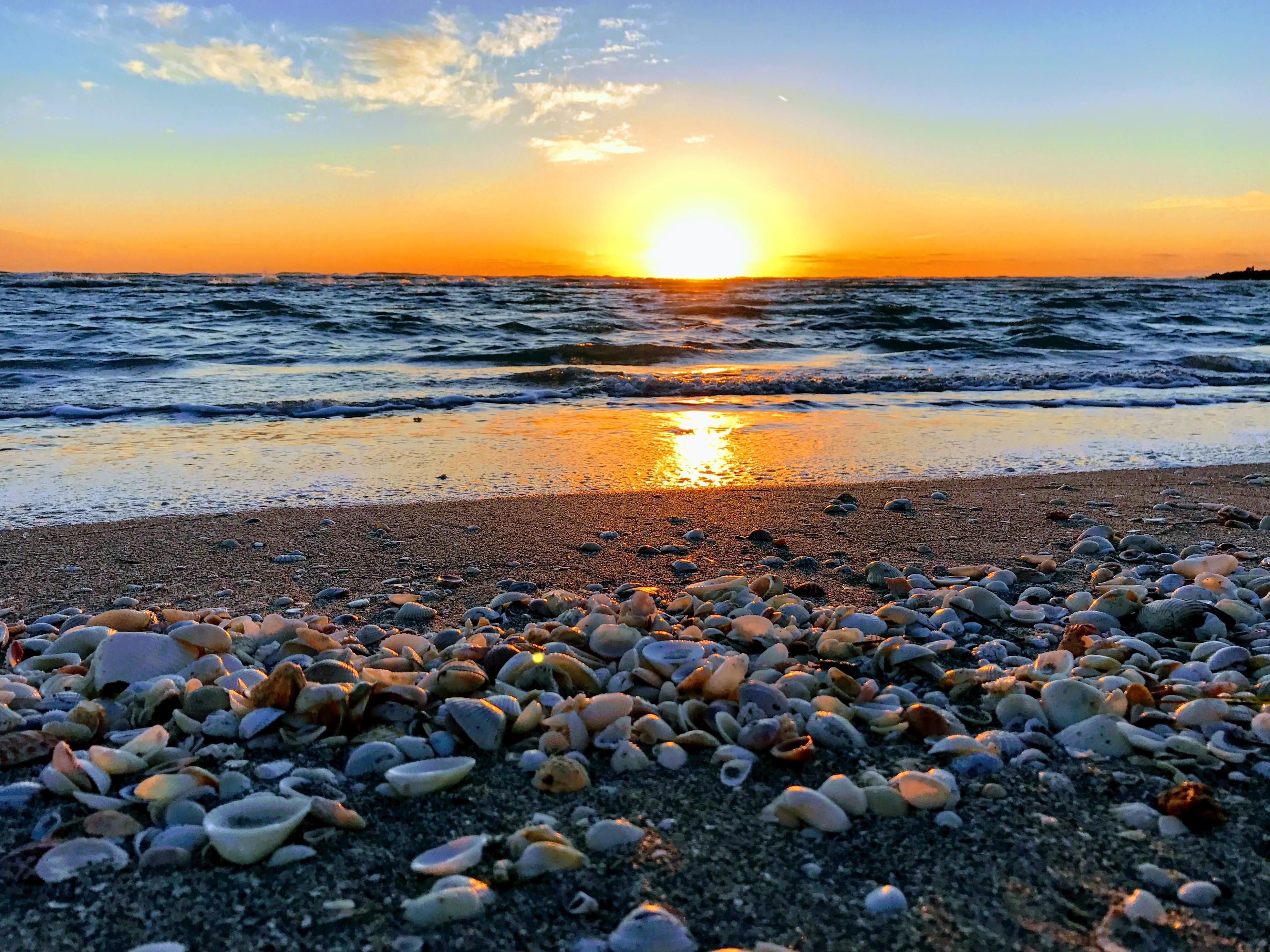 Schelpen zoeken Sanibel Island Florida