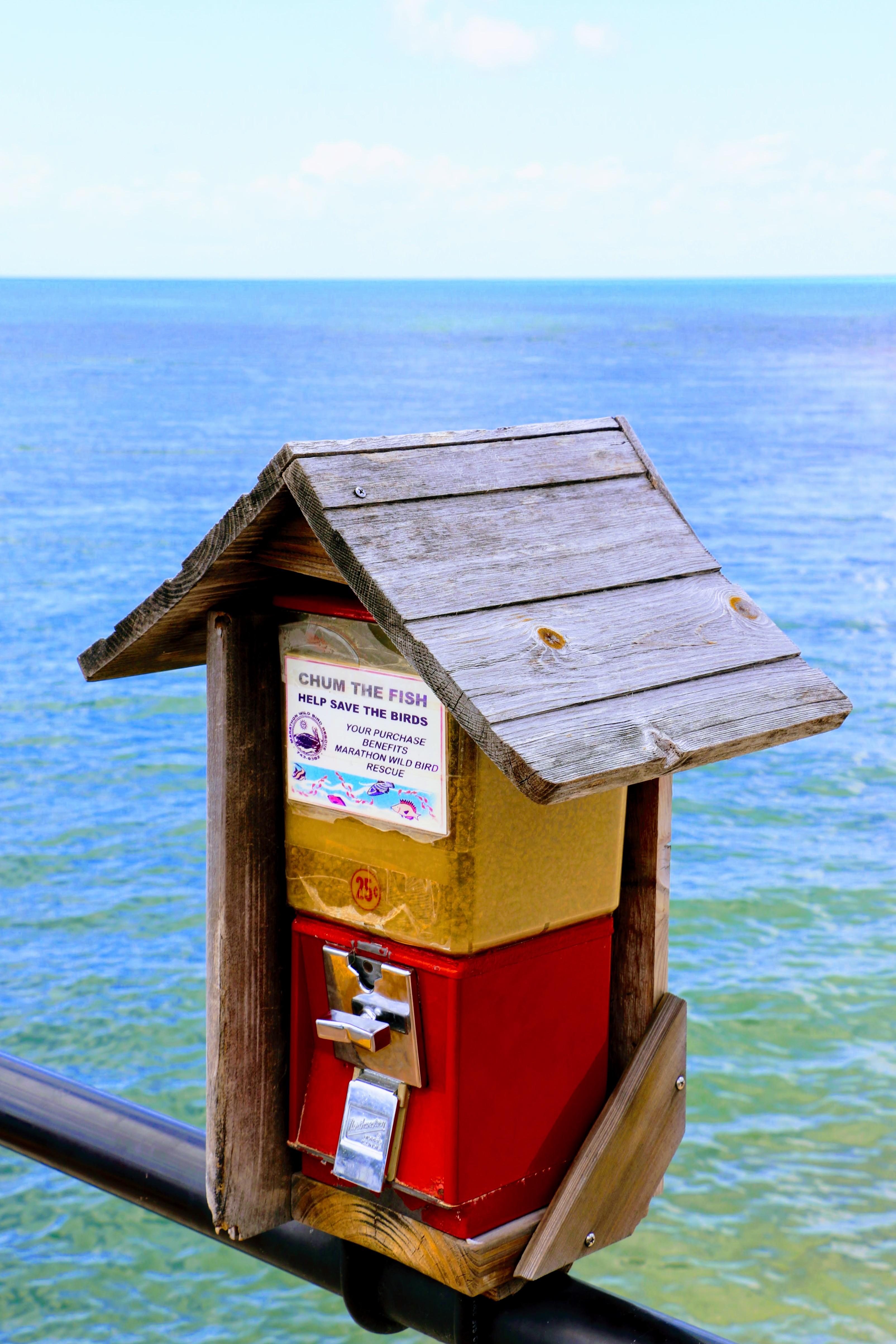 Een automaat voor visvoer