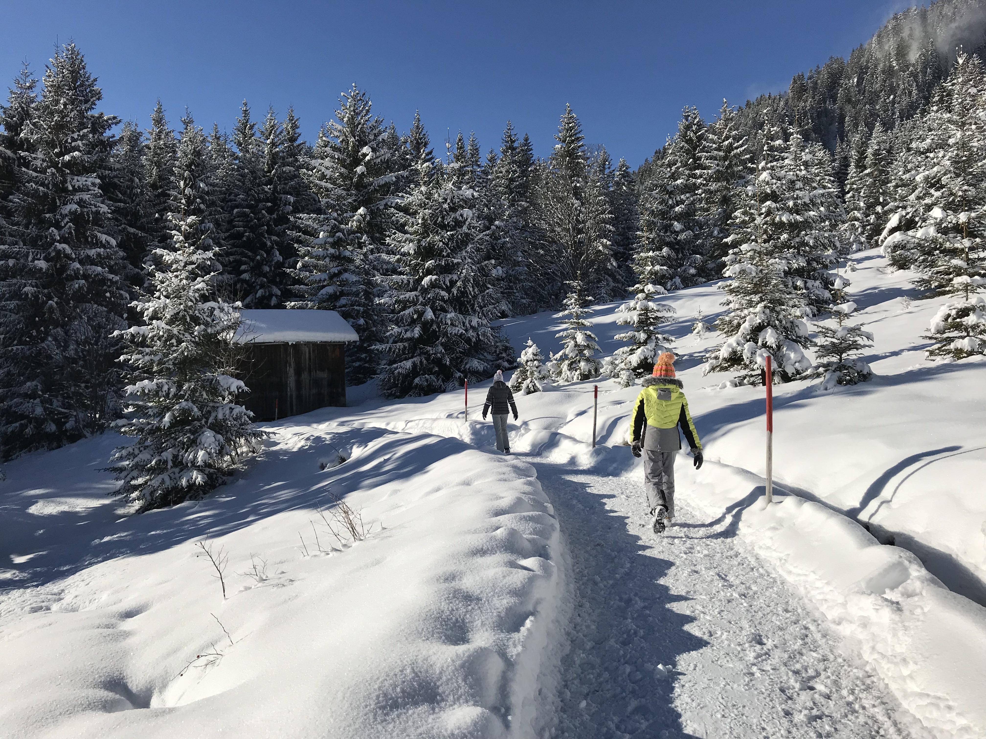 Winterwandelwegen in de Tiroler Zugspitzarena