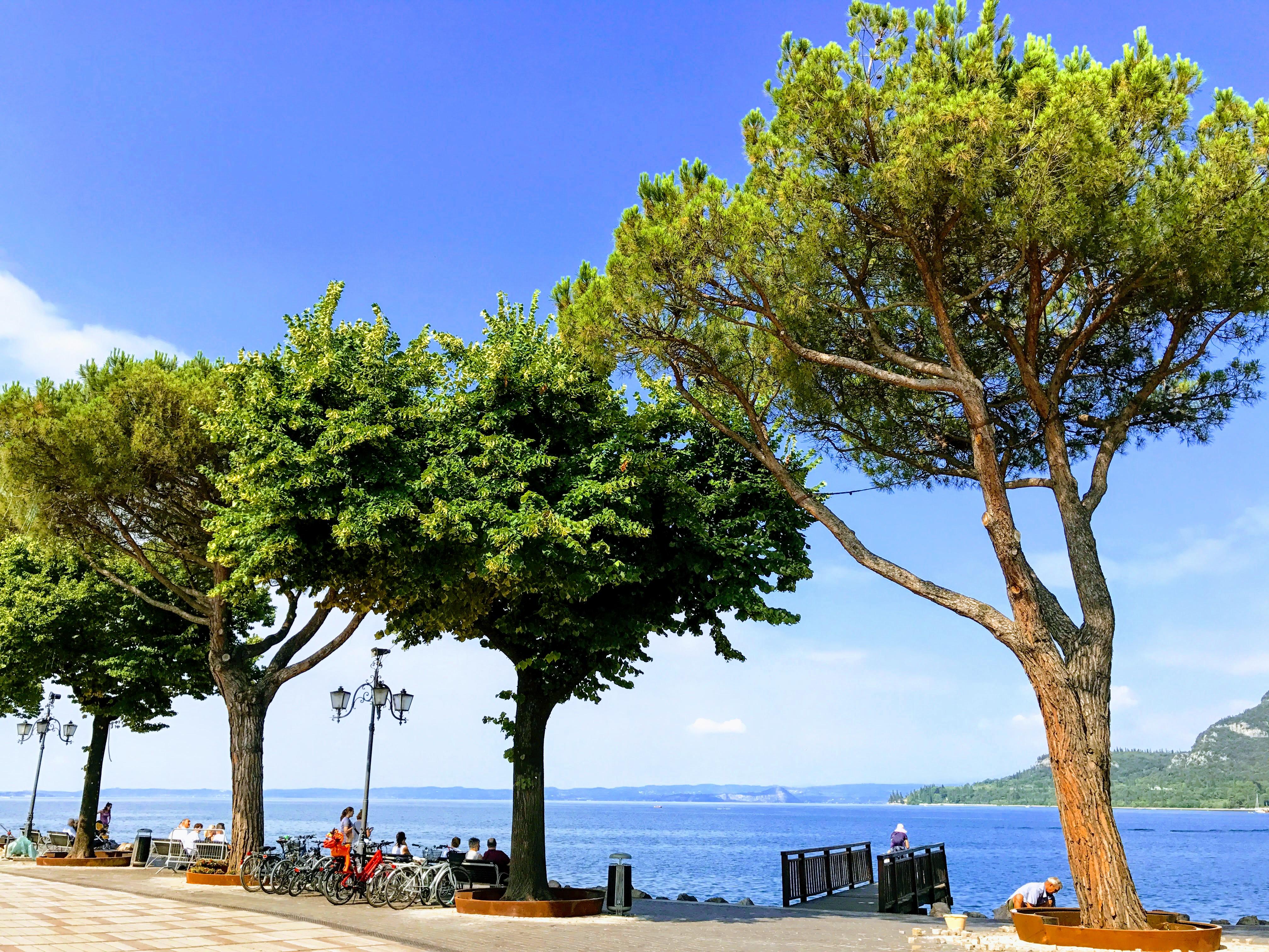 De promenade van Garda