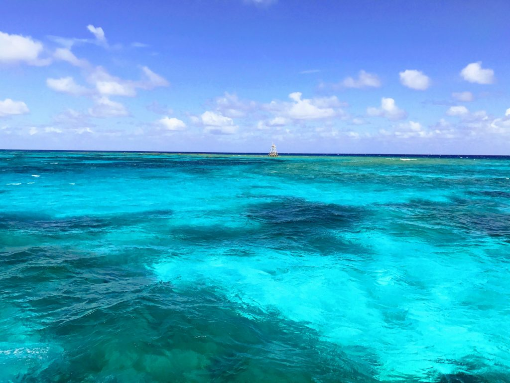 John Pennekamp Coral Reef State Park Florida