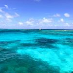 Coral Reef State Park – Glassbottom Boat Tours