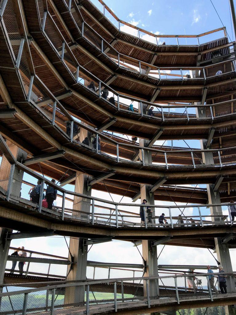 Baumwipfelpfad uitkijktoren
