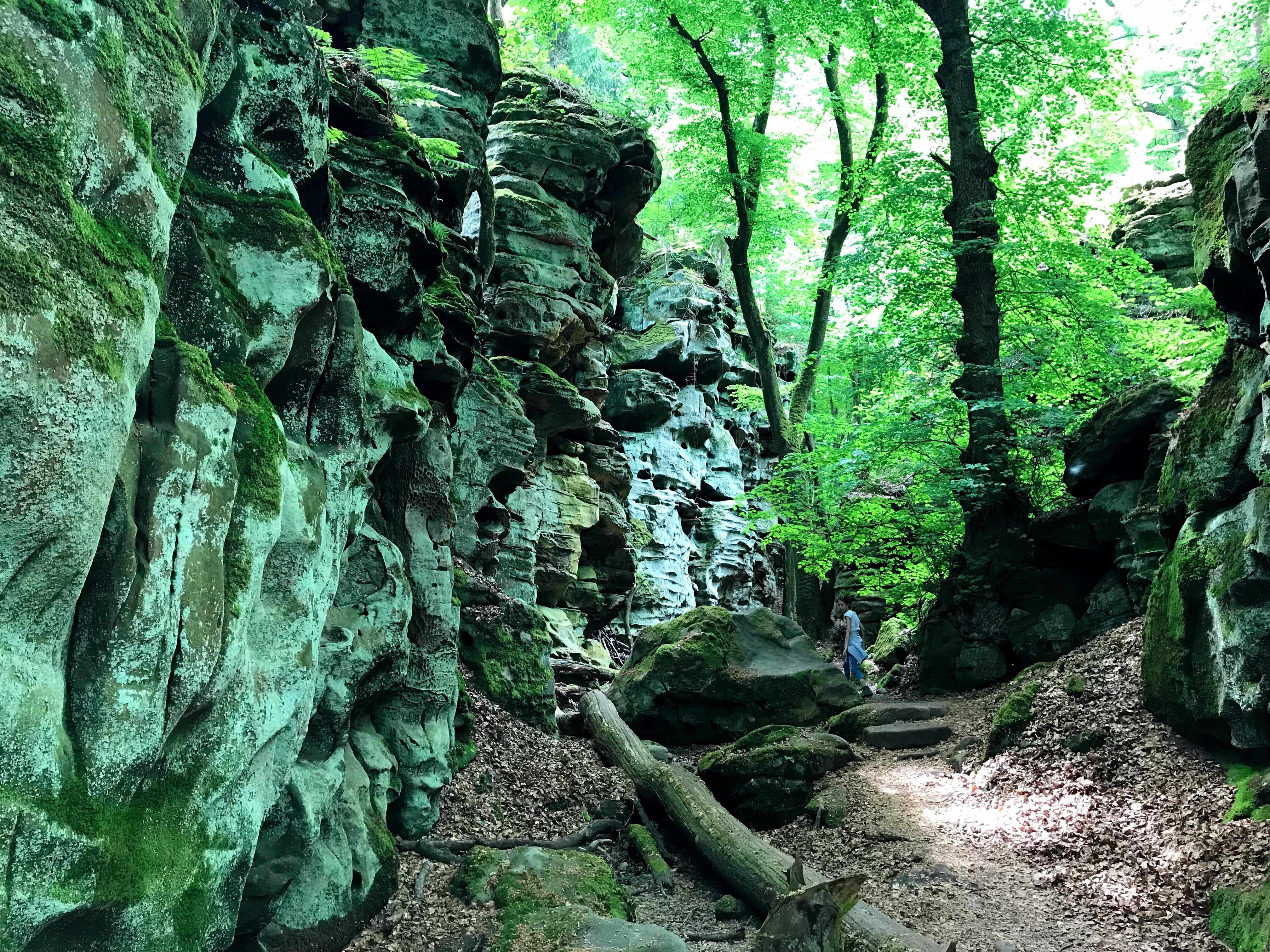 Groene rotsen in de Eifel