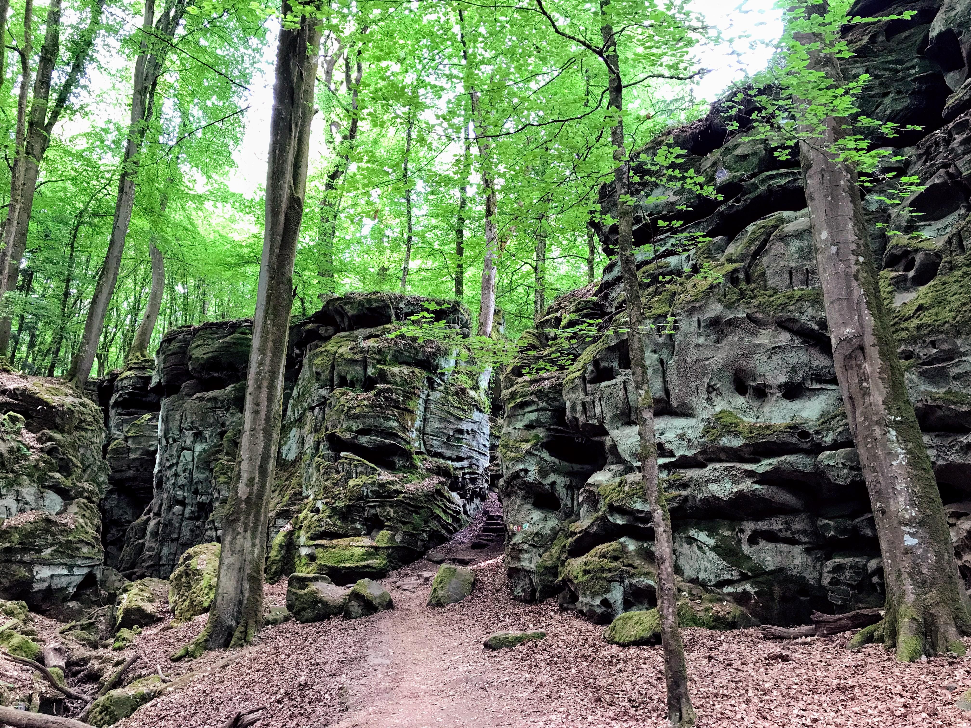 Wandelen in de Eifel Duitsland