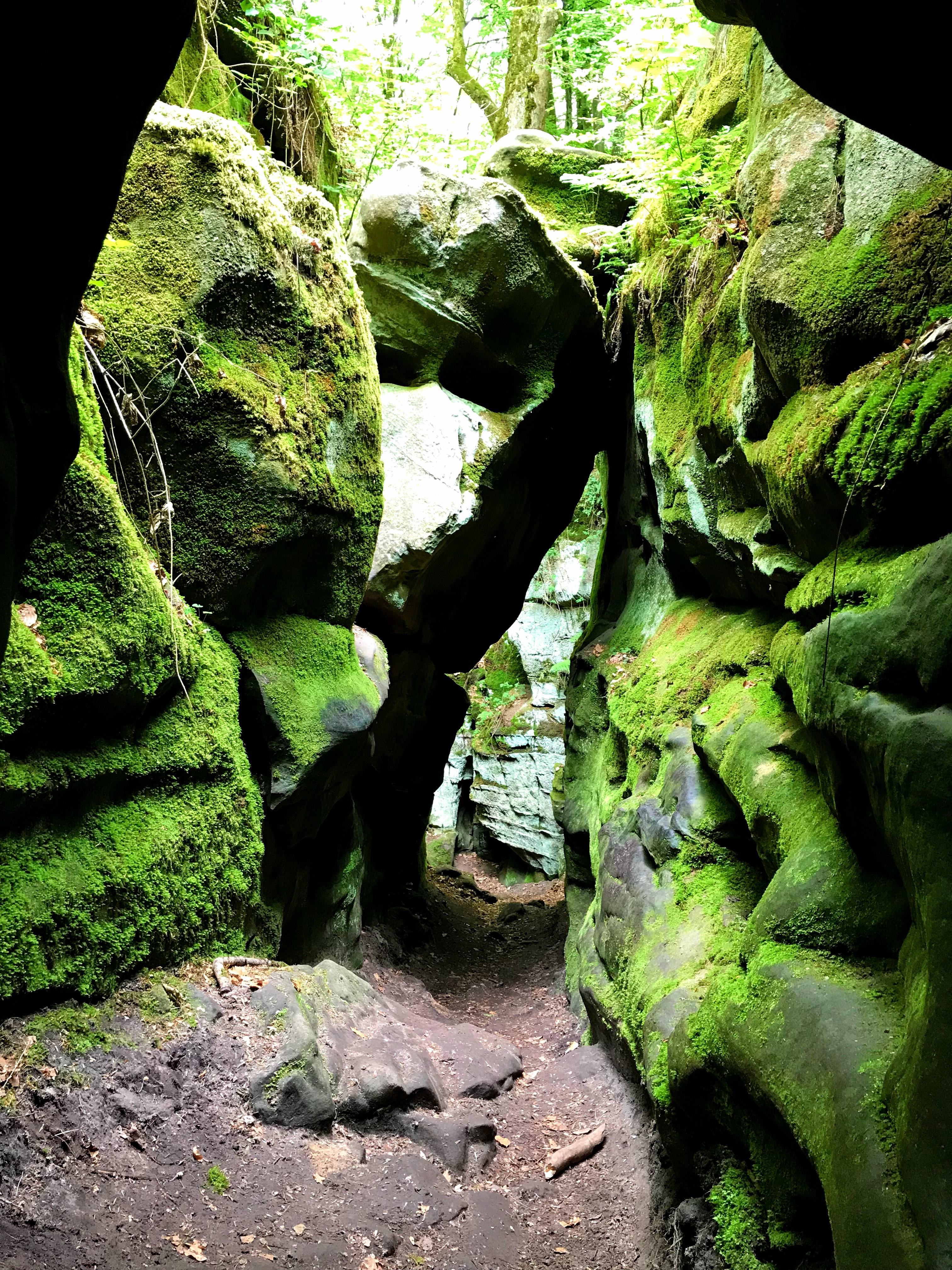 Rotsen vol met mos op de wandeling door de Teufelsschlucht in de Eifel