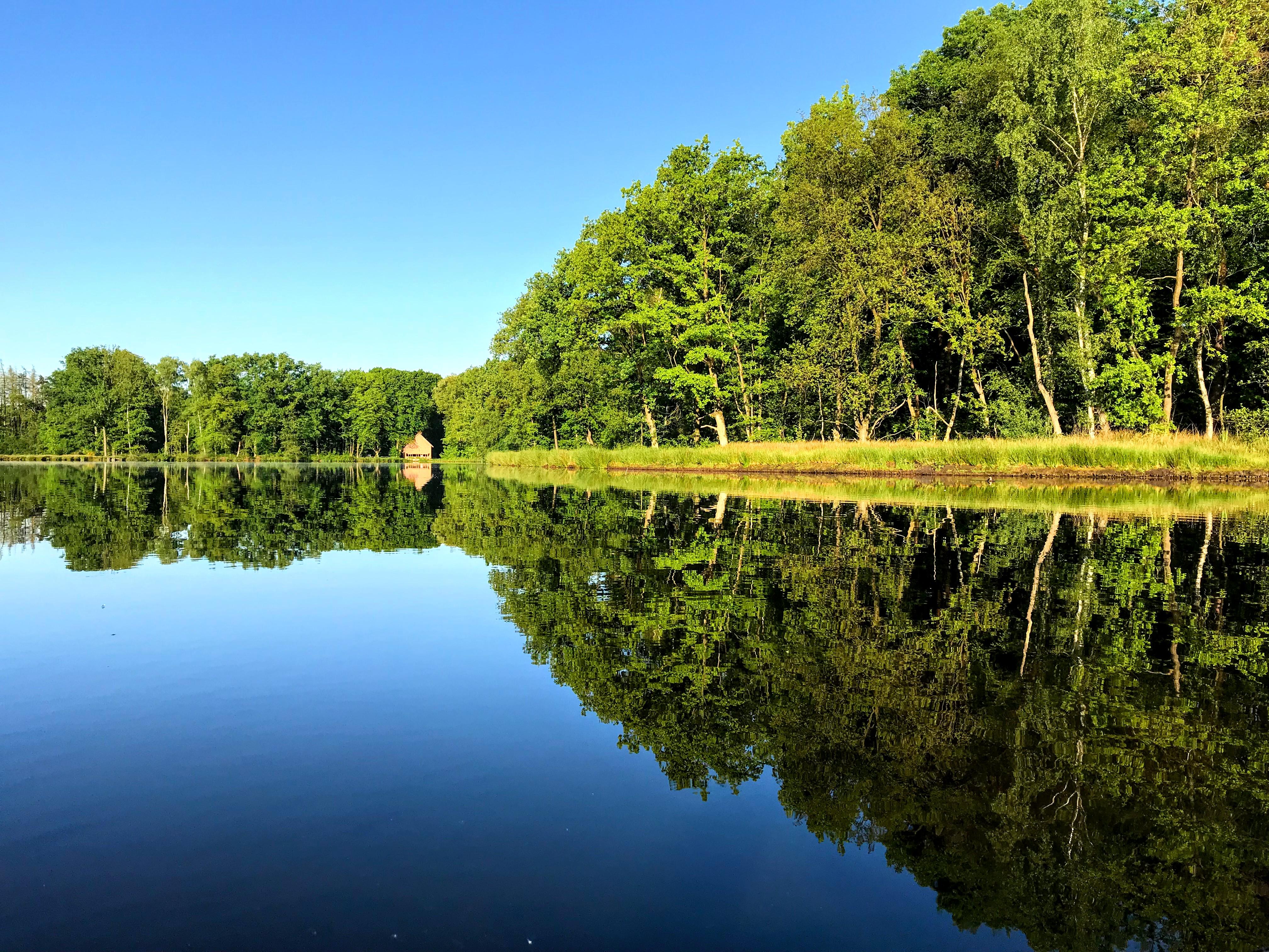 Waterspiegel - een mooie weerspiegeling in het wateroppervlak