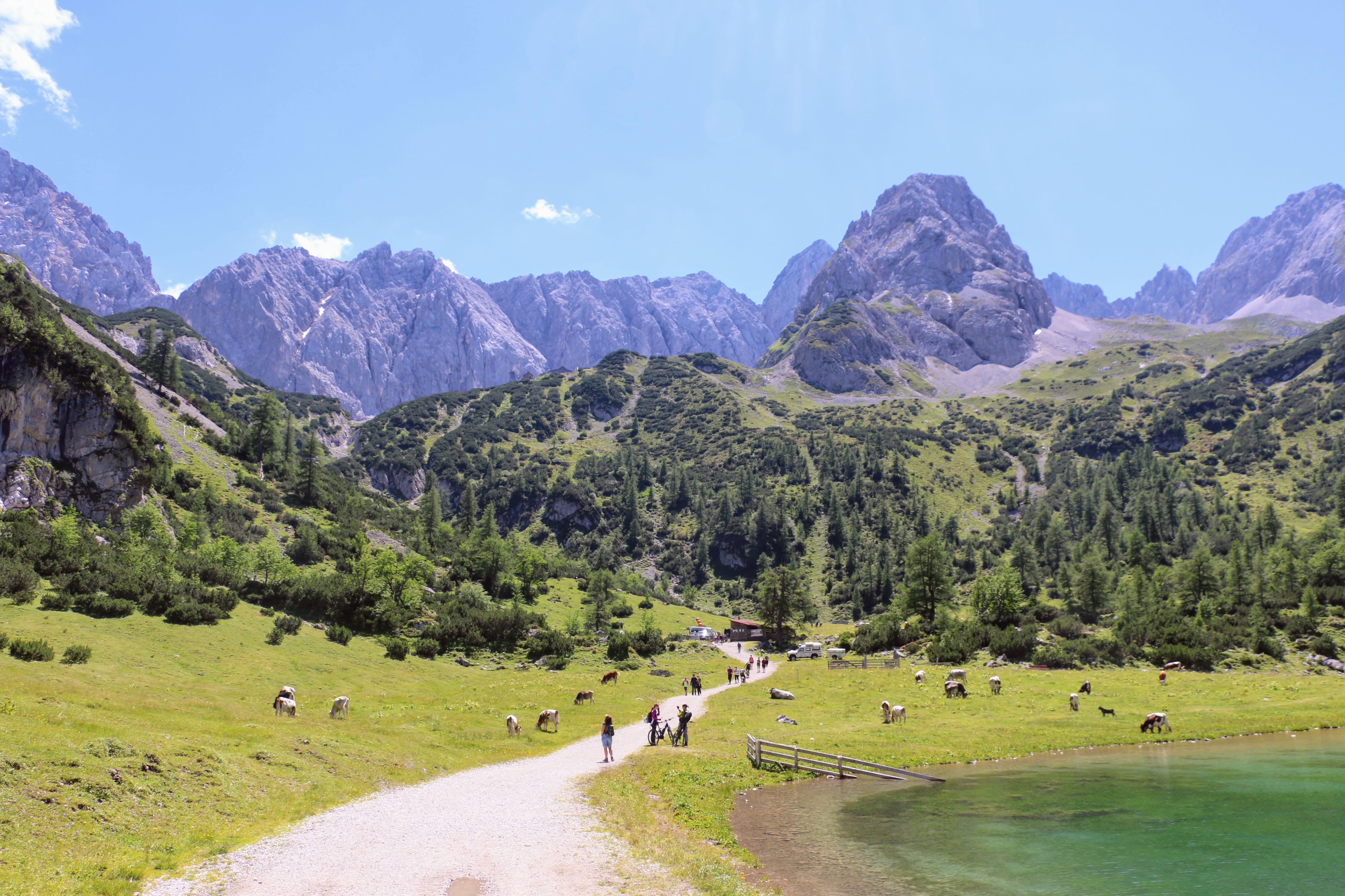 Wandeling naar Coburgerhütte