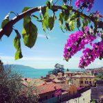 """Limonaia """"La Malora"""" in Gargnano"""