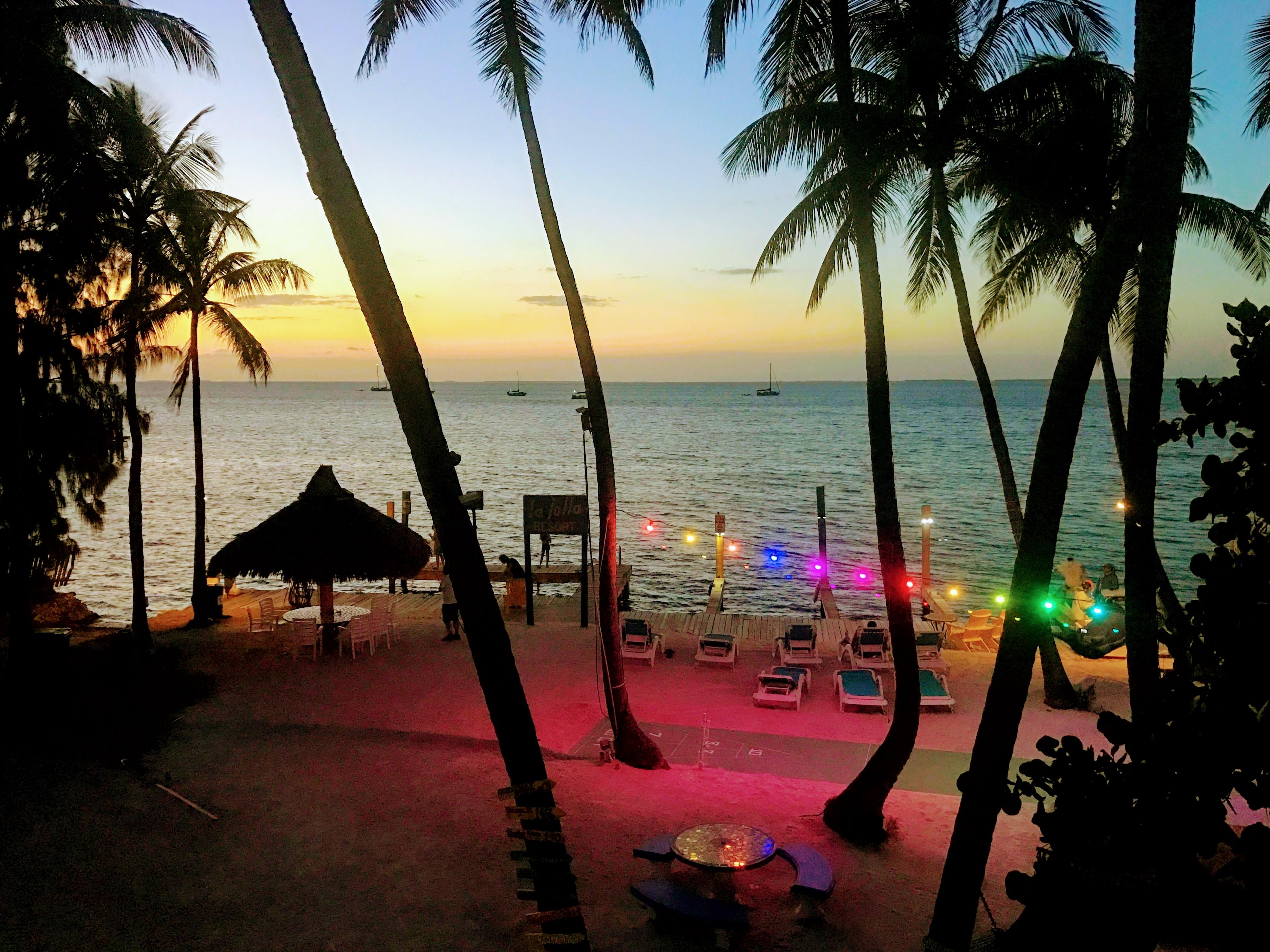 Zonsondergang met gekleurde lampjes in de palmbomen