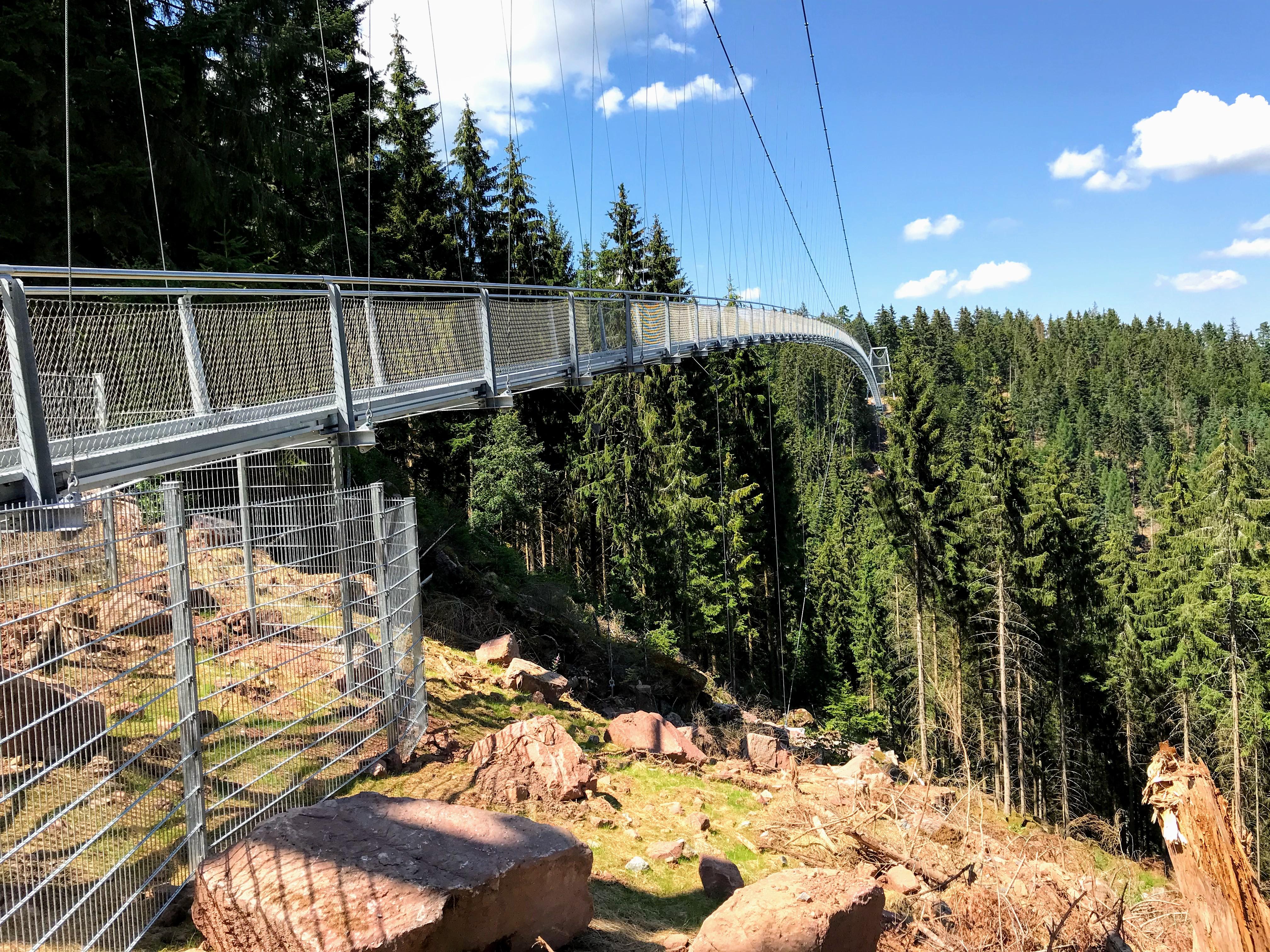 Wildline Hängebrücke Schwarzwald