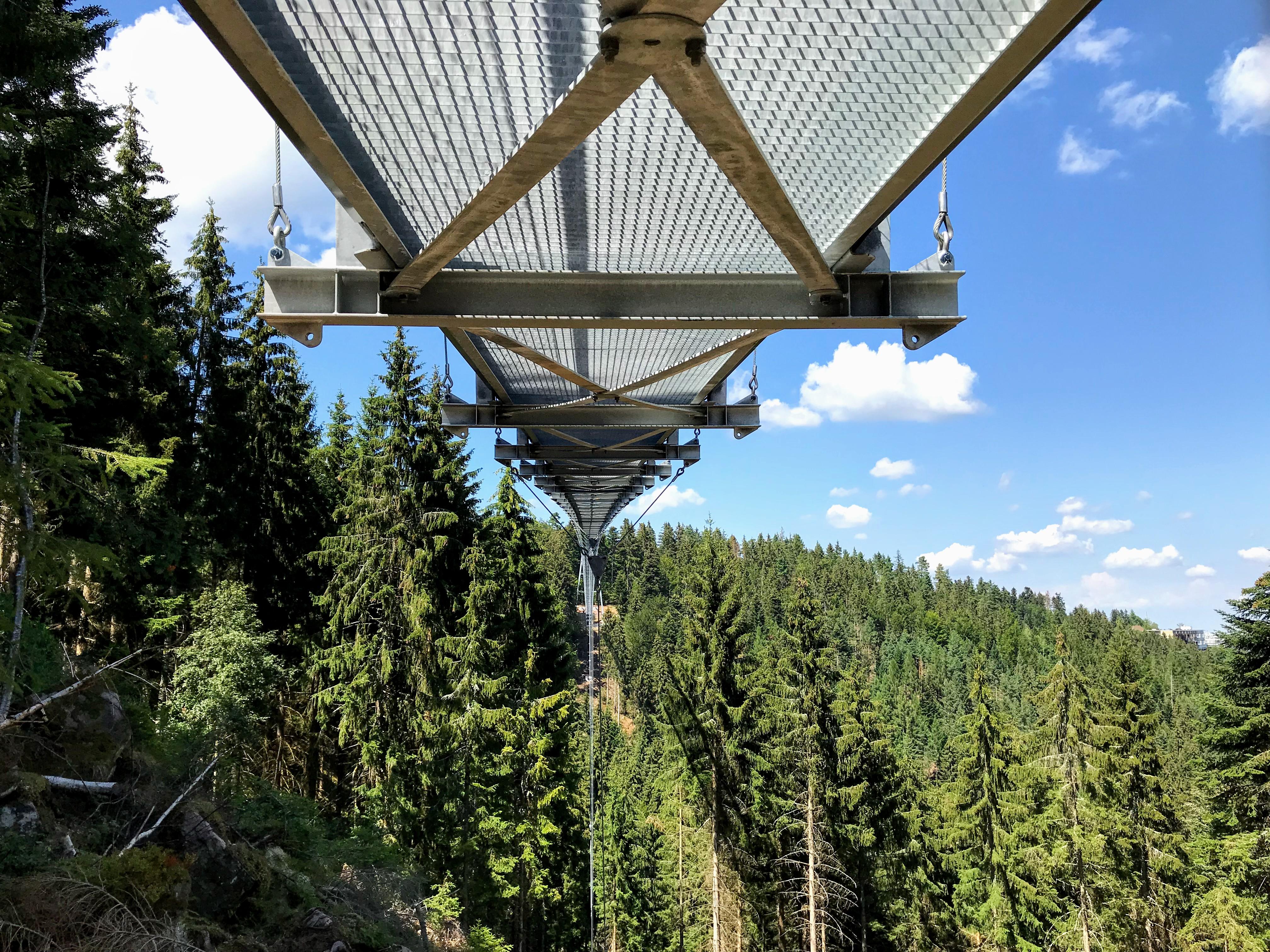 Wandelen over de hangbrug in het Zwarte Woud Duitsland