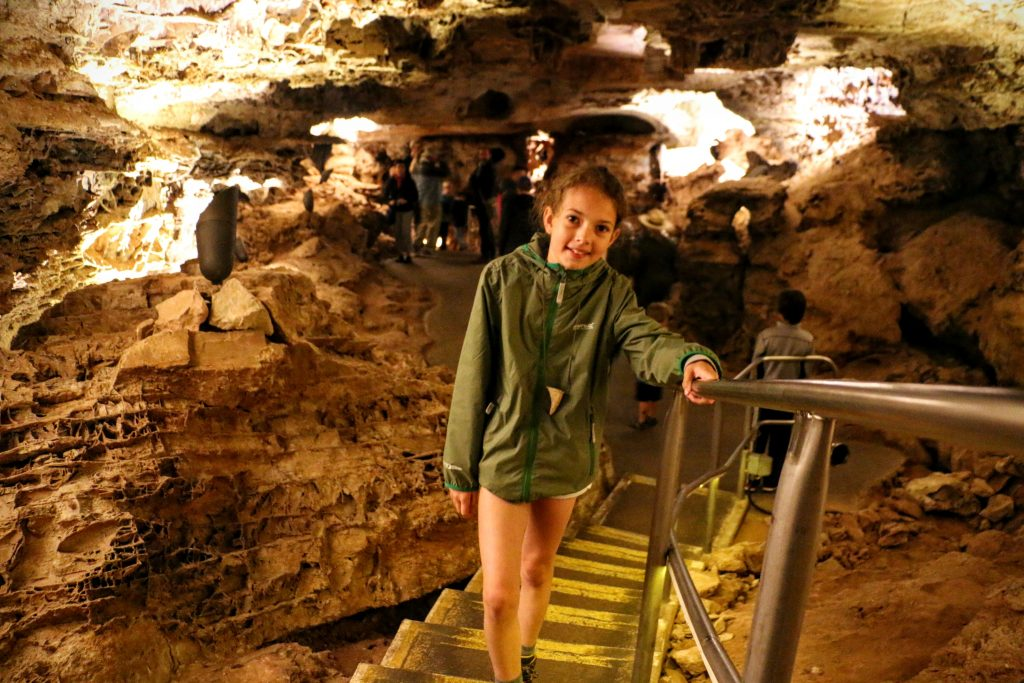 Wind Cave National Park met gids