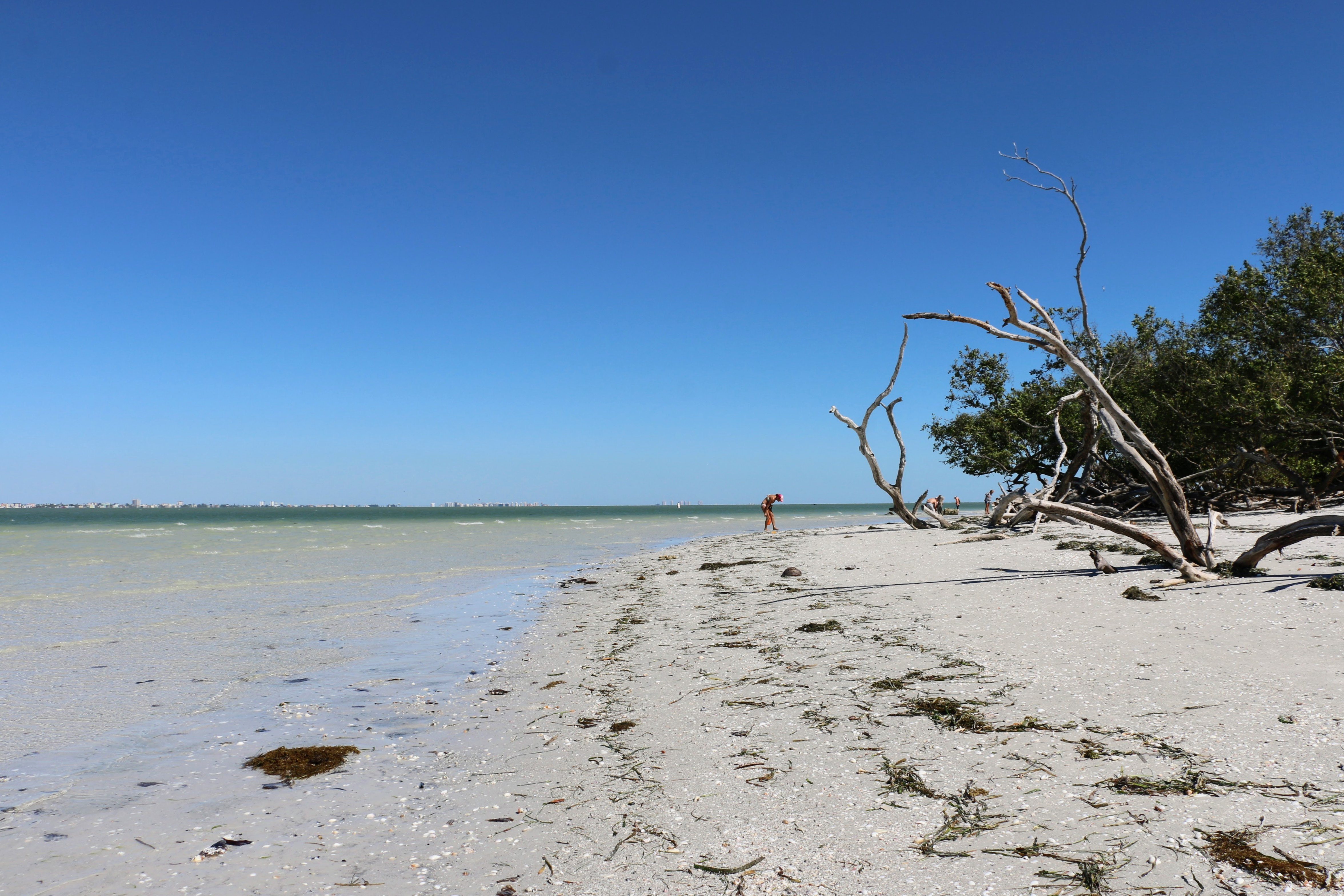 Lighthouse Beach Sanibel