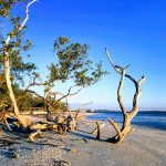 Sanibel Island – Lighthouse Beach Park