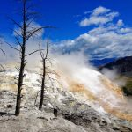 Mammoth Hot Springs – Yellowstone NP