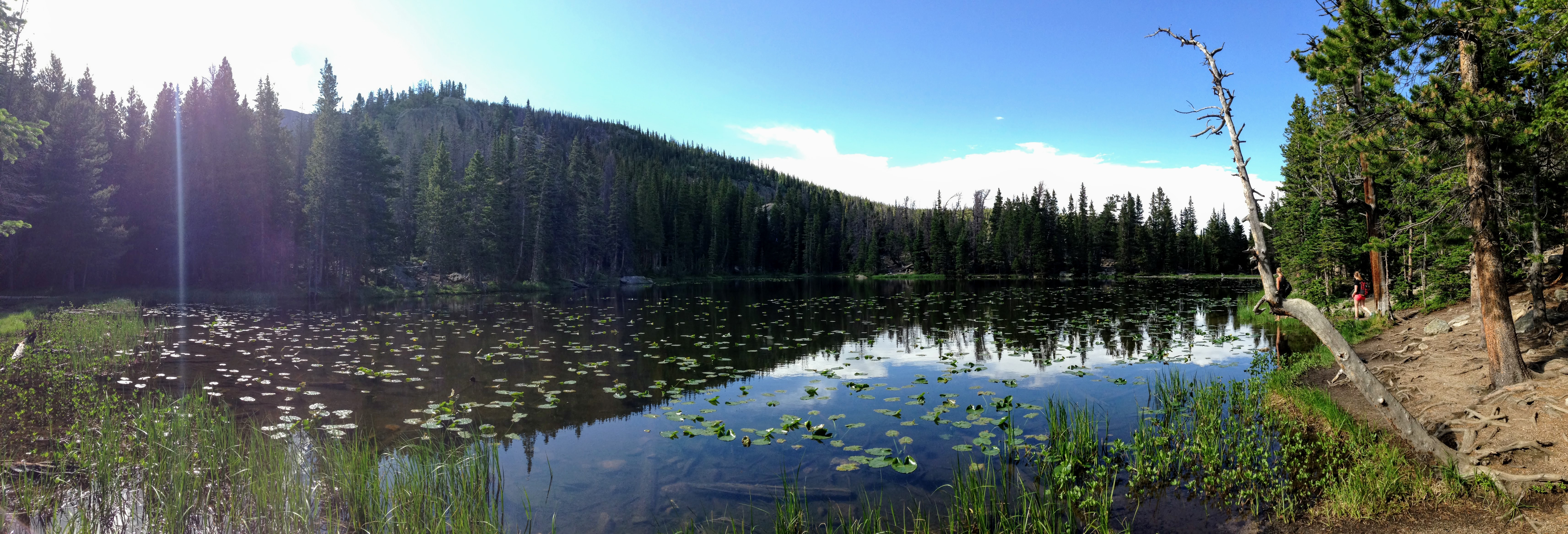 Nymph Lake panorama Colorado