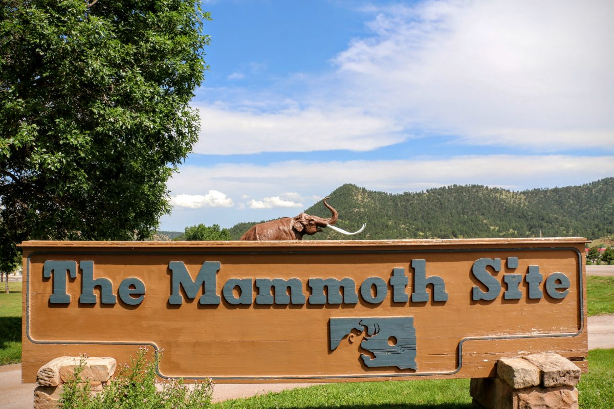 The Mammoth Site of Hot Springs