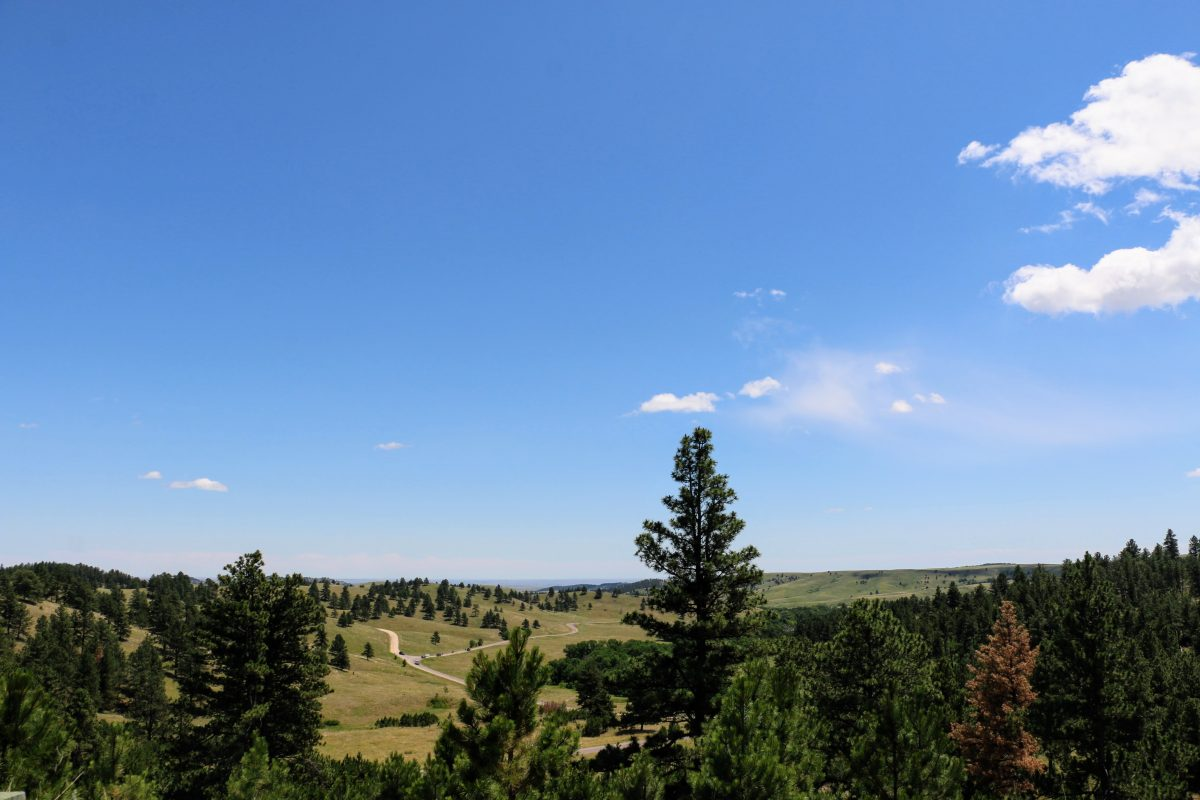 Custer State Park Route