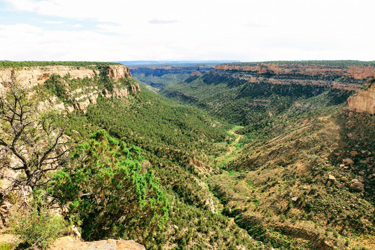 Mesa Verde foto's