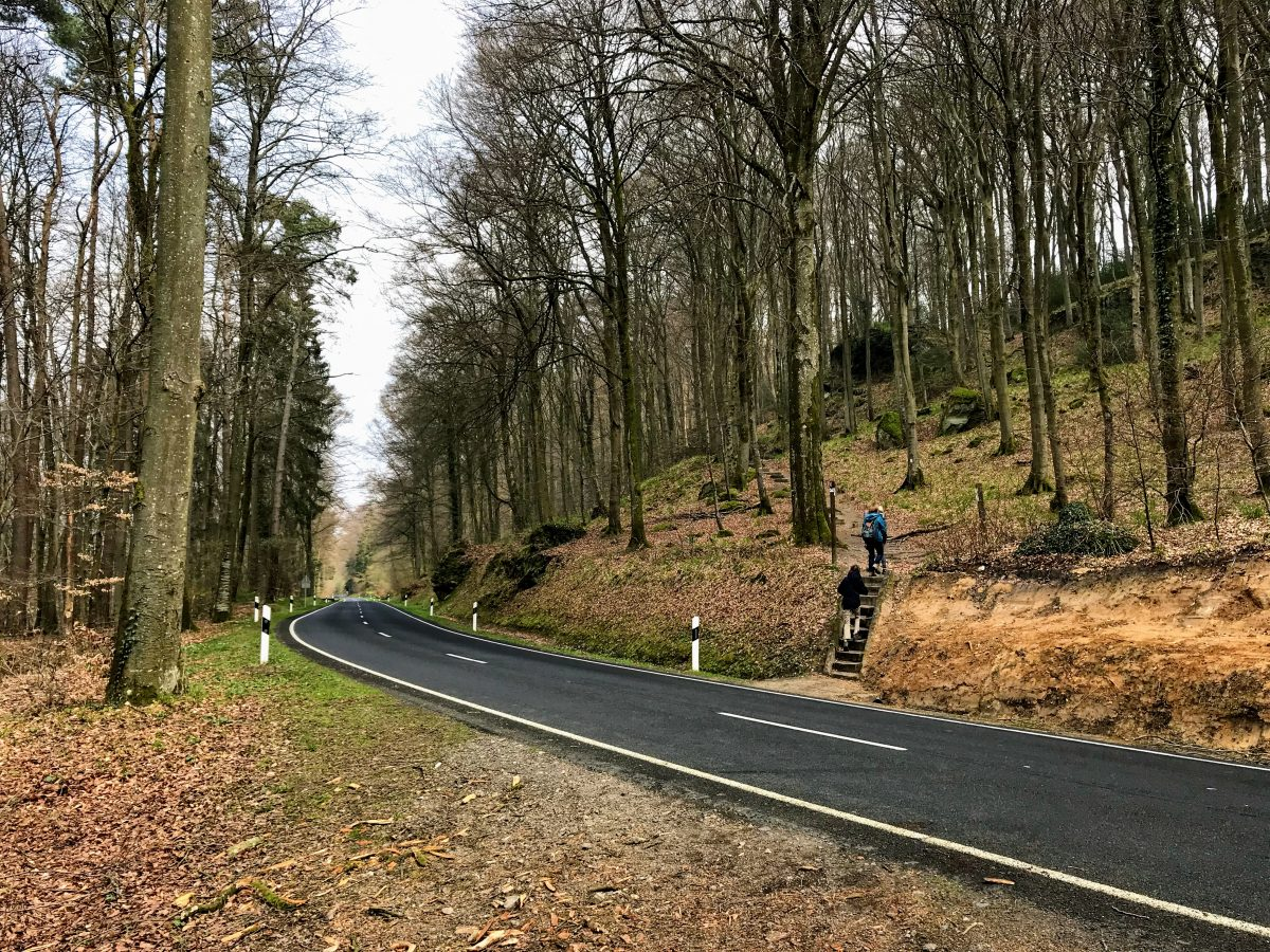 Wandeling Mullerthal Trail Luxemburg