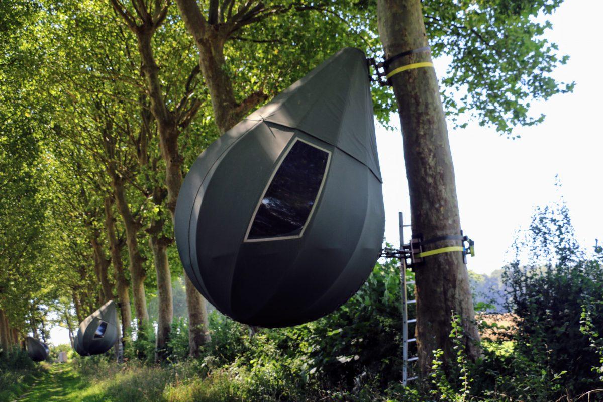 Traanvormige tenten Borgloon dreef