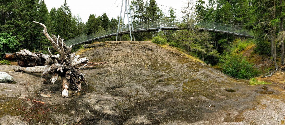 Hangbrug Top Bridge Park Parksville