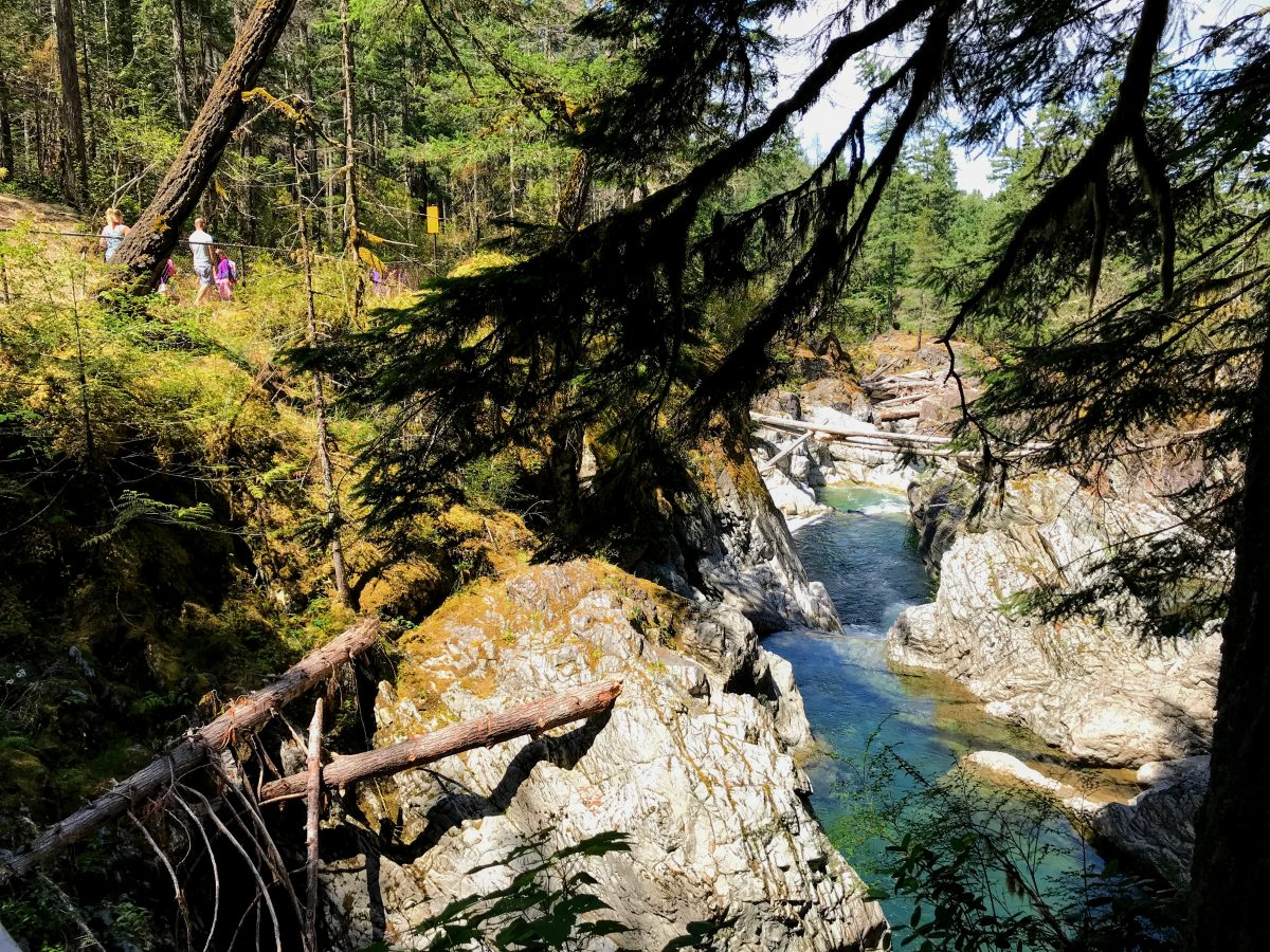 Lower Falls - Little Qualicum Falls Provincial Park