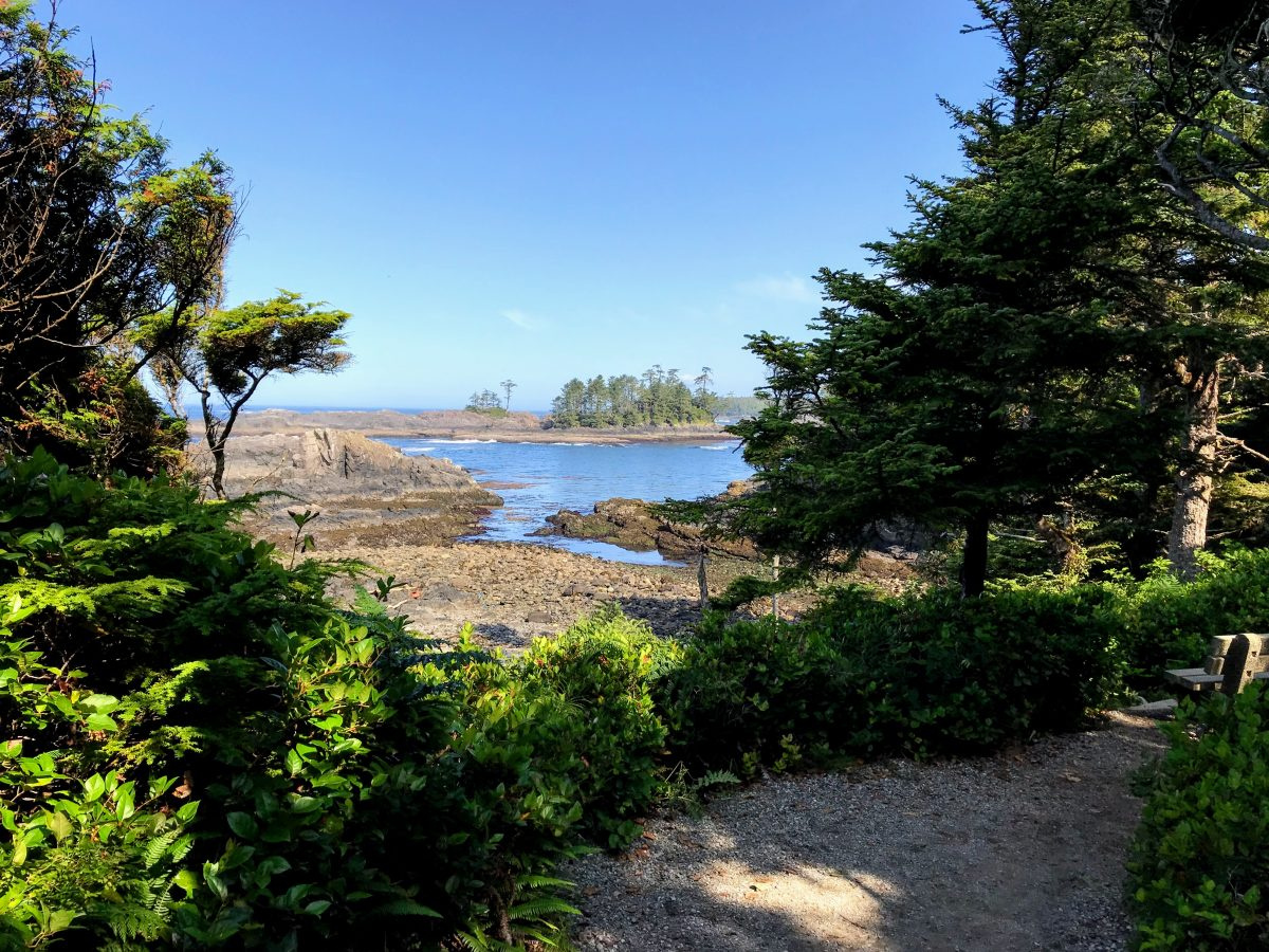 Lighthouse loop - Wild Pacific Trail