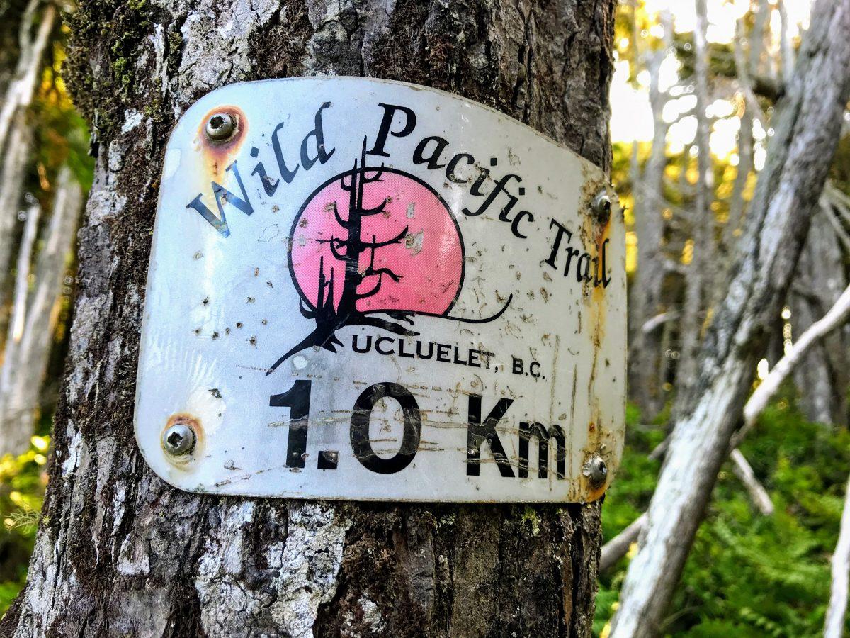 Wild Pacific Trail B.C. Ucluelet 1.0 km