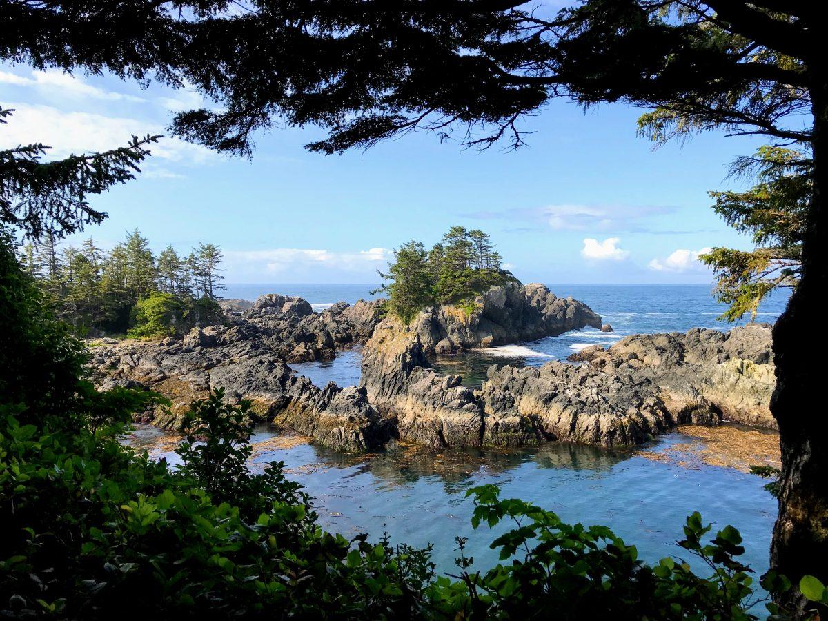 Wild Pacific Trail loop