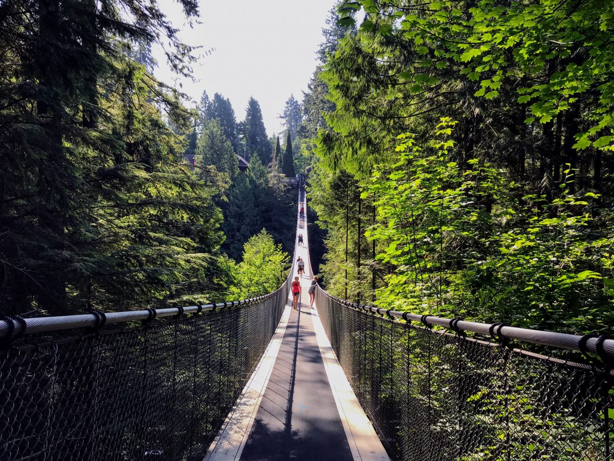 hangbruggen - Capilano Suspension Bridge