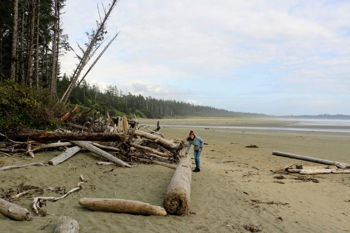 Drijfhout op het strand in Tofino - Canada