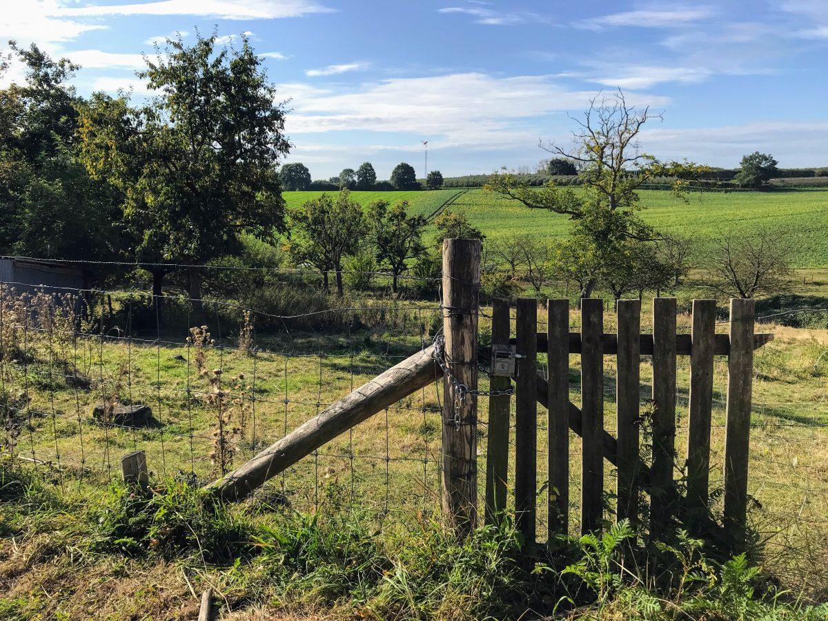 Limburgs landschap in Borgloon