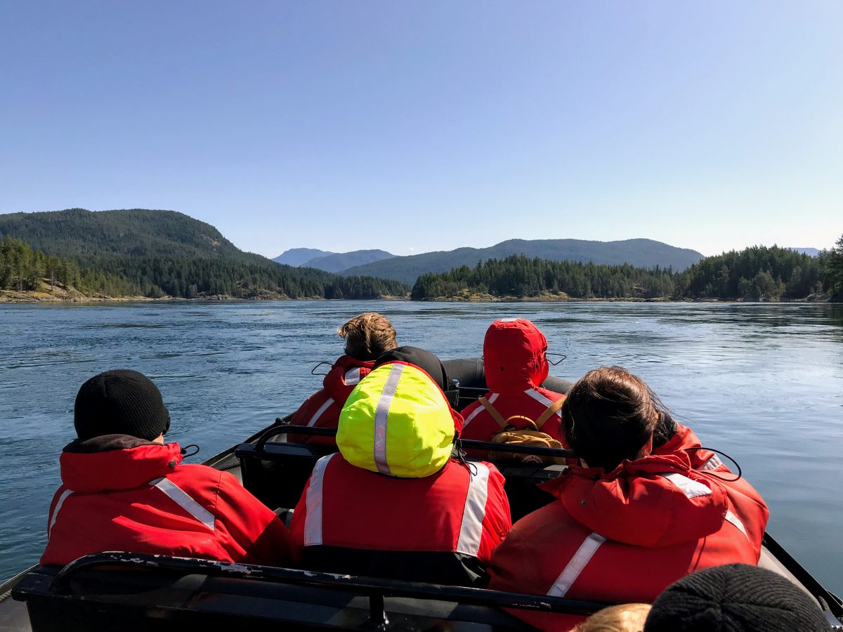 Whale Watching Tours Eagle Eye Adventures