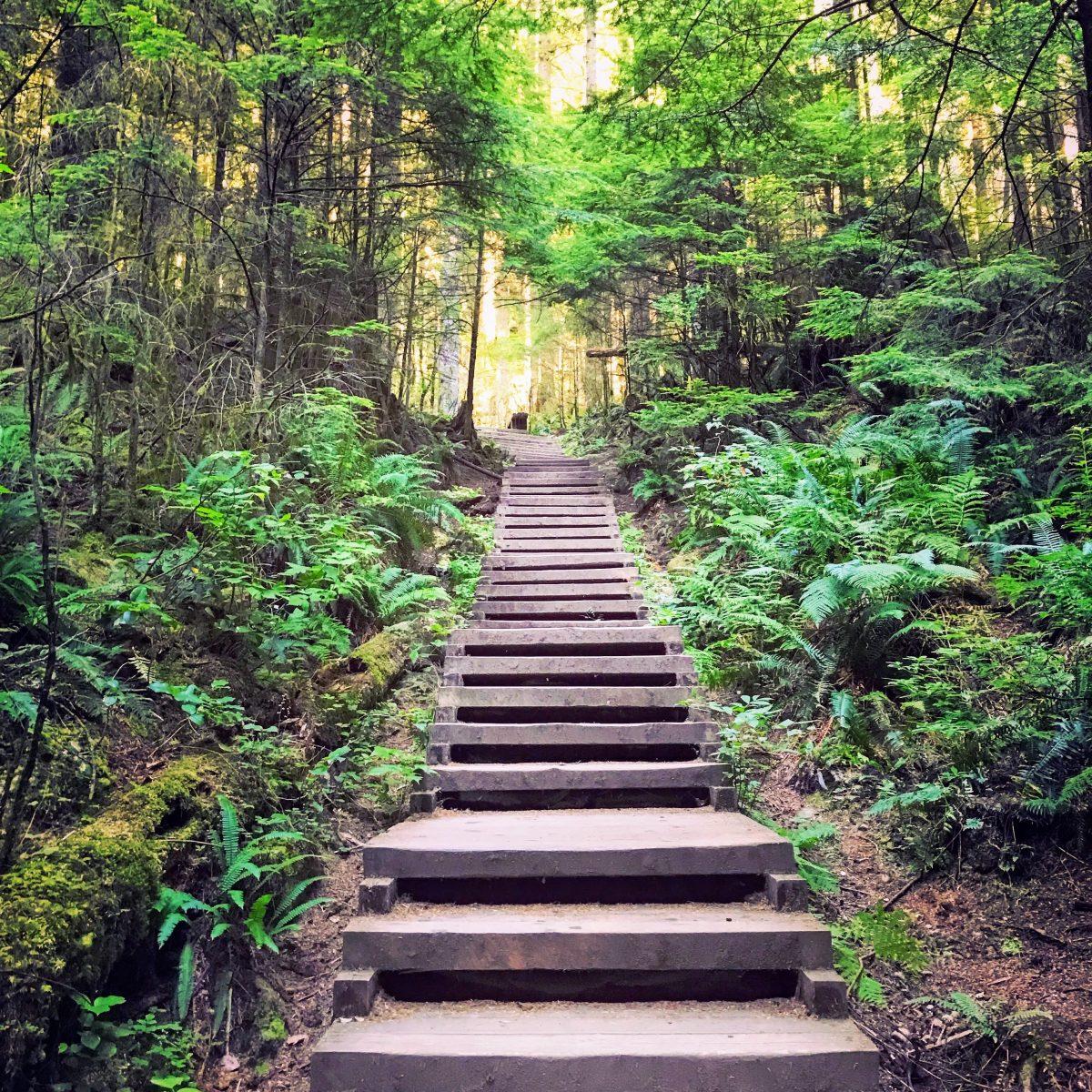 Wandelpad naar de Twin Falls