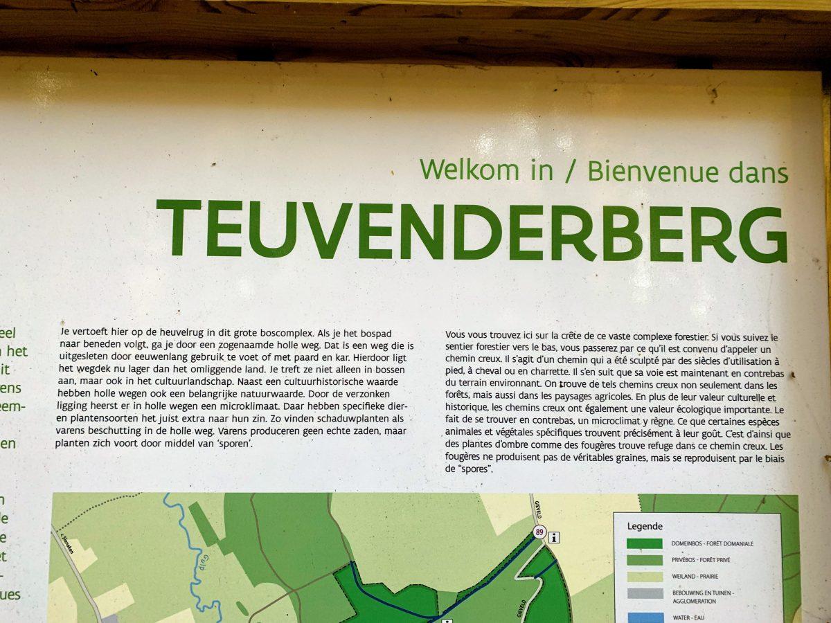 Teuvenderberg