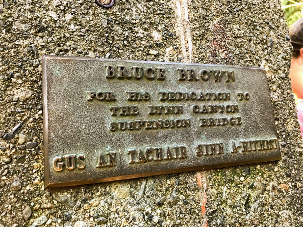 Bruce Brown Suspension Bridge