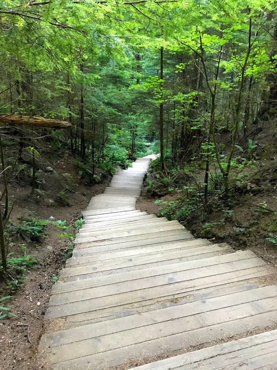 Twin Falls hike Lynn Canyon