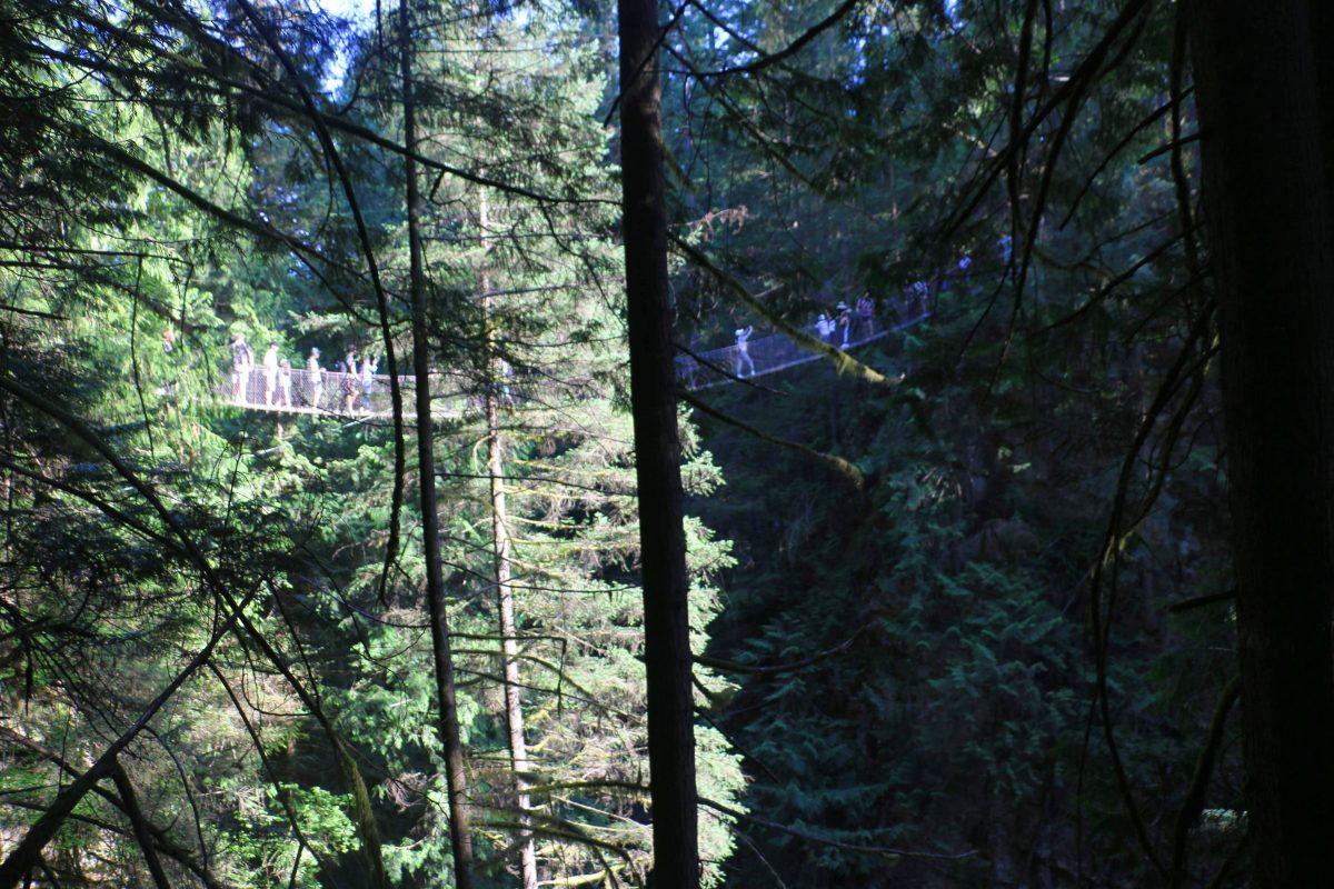 Hangbrug Lynn Canyon