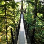 Treetops Adventure  Vancouver