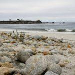 Bezienswaardigheden in Monterey