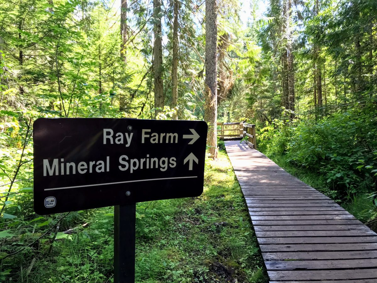 Ray Farm & Mineral Spring - wandeling Wells Gray Park