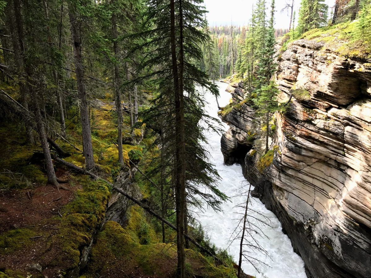 Athabasca Falls Lower Canyon